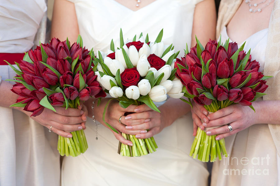 red-and-white-tulip-and-rose-wedding-bouquets-lee-avison